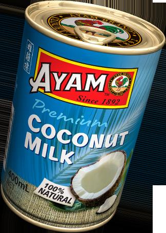 coconut-milk-200